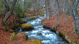 安曇野の用水路
