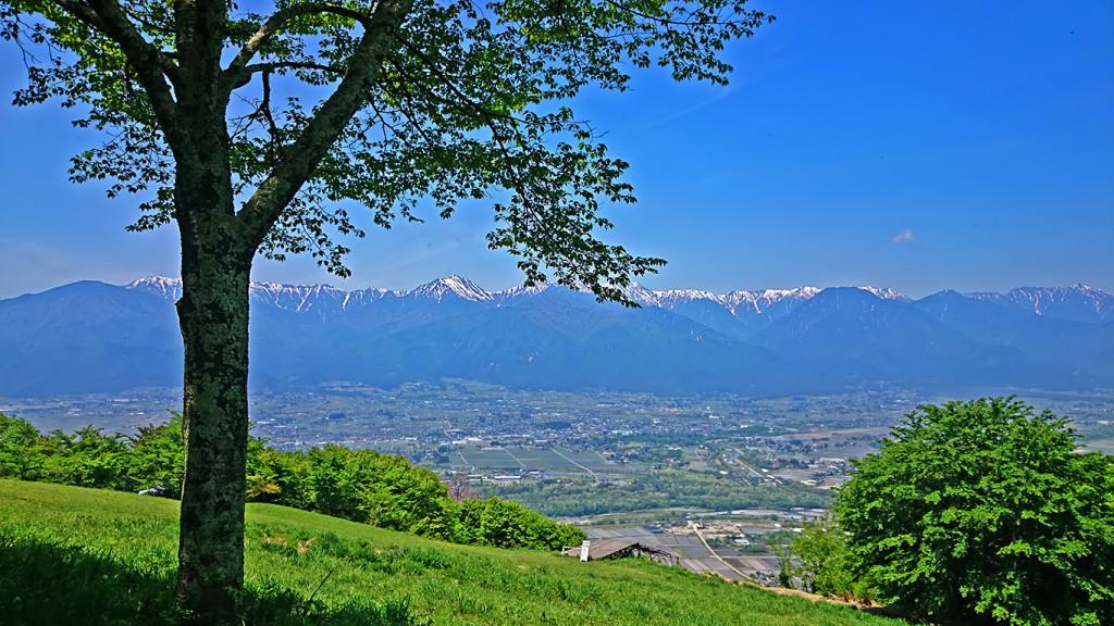 新緑の長峰山