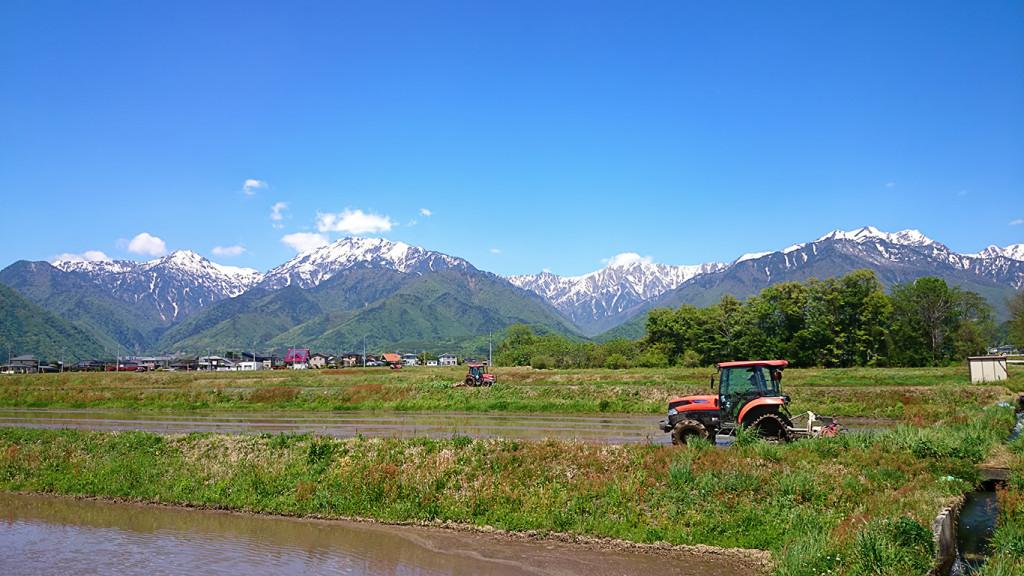 山と田植え時期の田んぼ