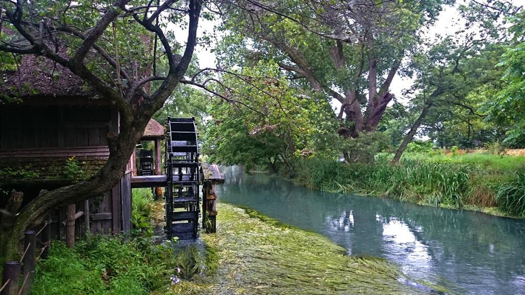梅雨の大王水車小屋