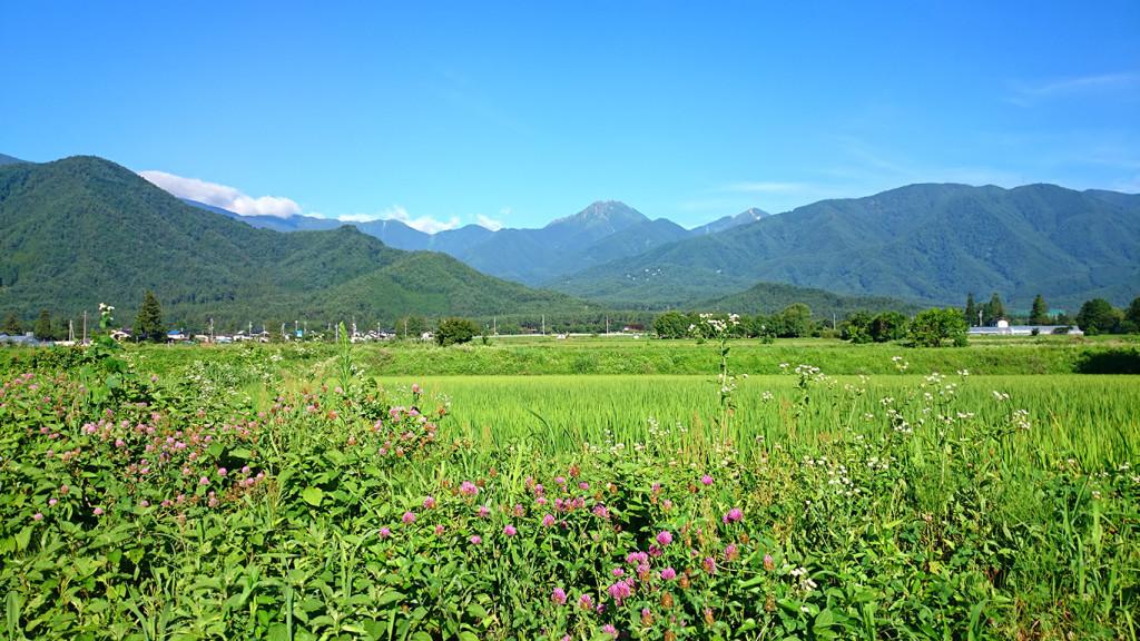 常念道祖神付近から見た夏の常念岳
