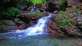高瀬川水系の渓流