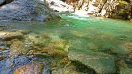 中房川上流の川面