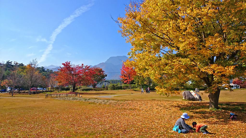 安曇野ちひろ美術館の庭 秋の風景1