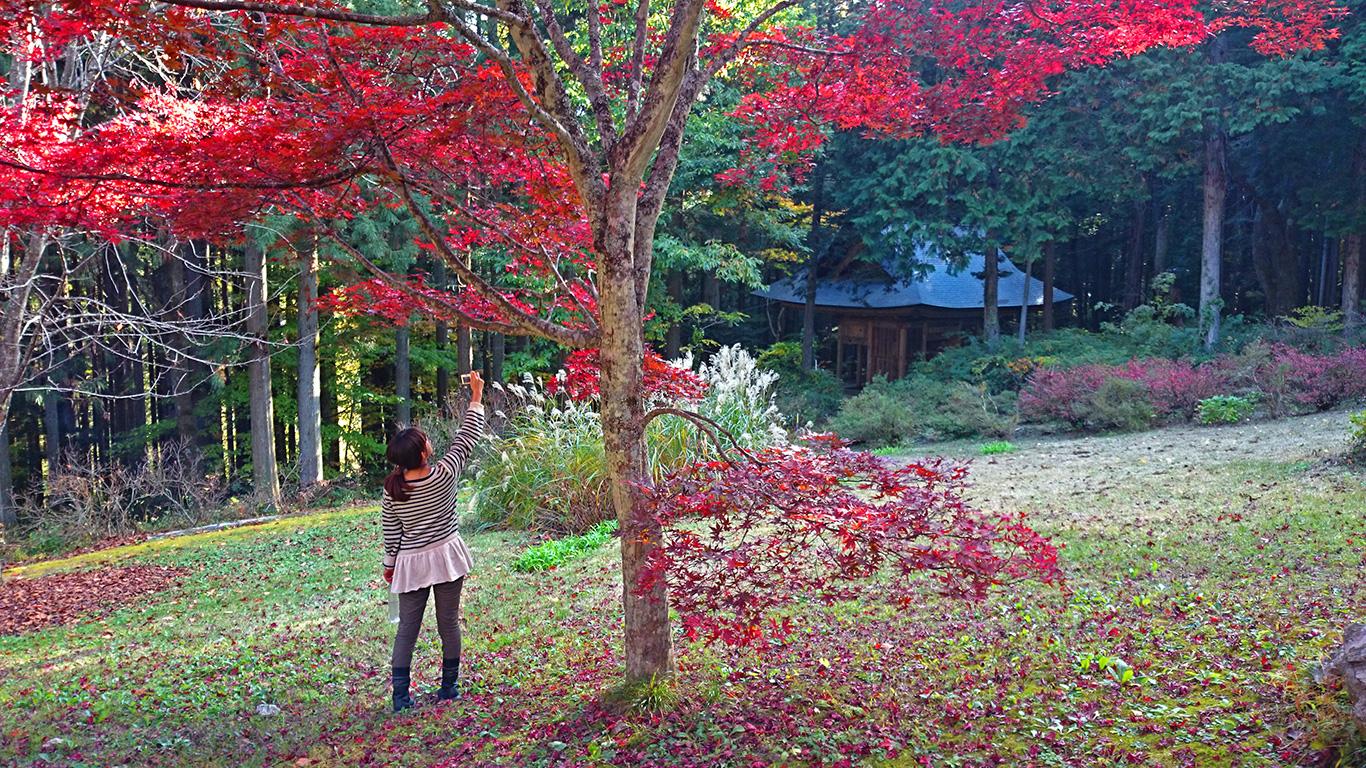 満願寺の紅葉の下で