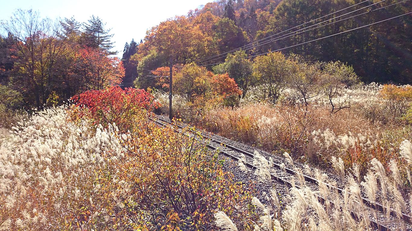 木崎湖付近の秋の大糸線2