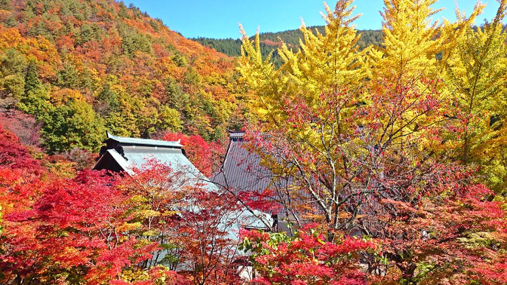 霊松寺の紅葉