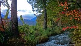 秋の油川の様子