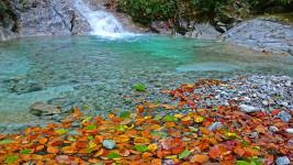 高瀬渓谷 清流に浮かぶ紅葉