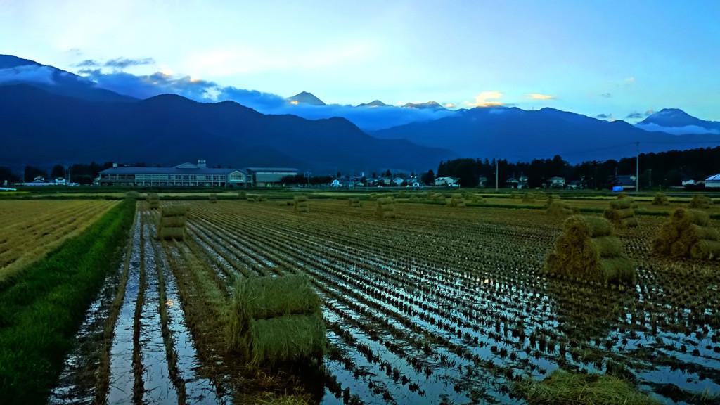 巻藁と雲の上に顔を出し夕日を浴びる常念岳