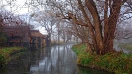 霧が立ち込める大王水車小屋