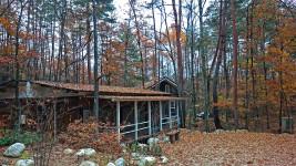 屋根の落葉
