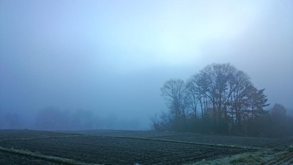 霧に包まれる有明1