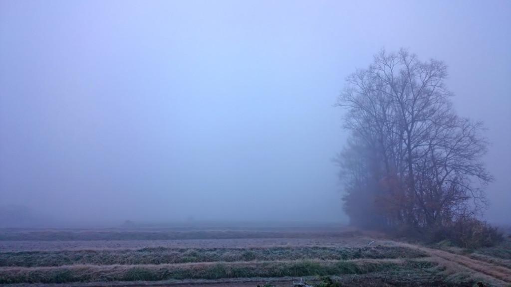 霧に包まれる有明2