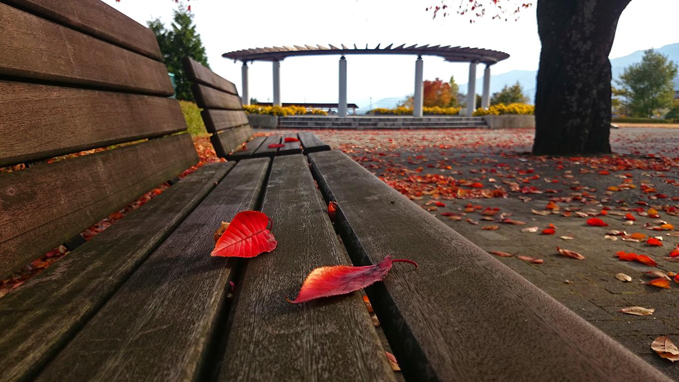 松川中央公園(リンリンパーク)ベンチと紅葉