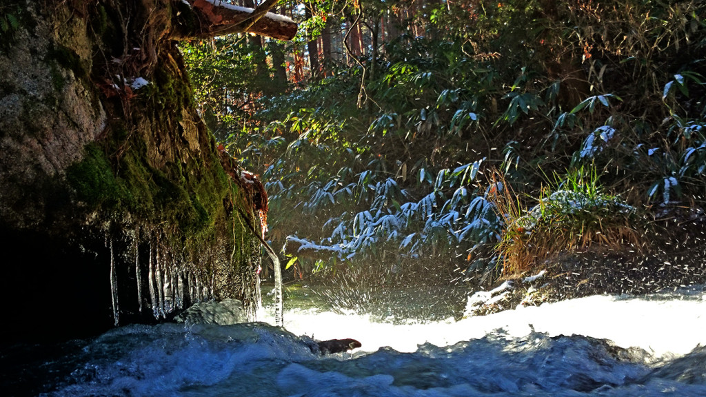 アーティスティックに凍った油川の風景2
