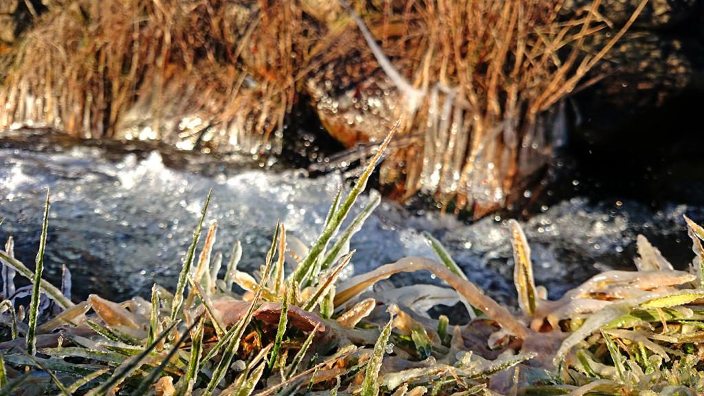 アーティスティックに凍った油川の風景3