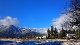 冷え込んだ朝の冬の景色