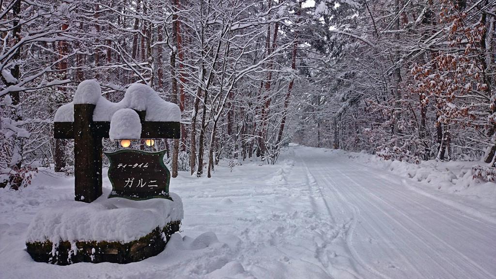 喫茶ガルニ前から雪の降る有明山通りを。