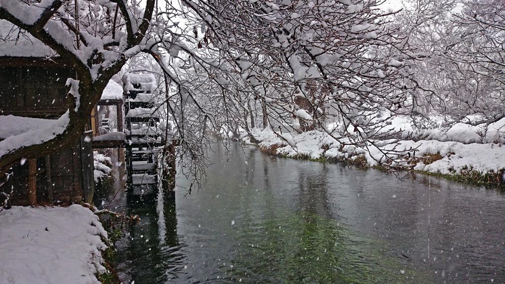雪の大王わさび農場の水車小屋