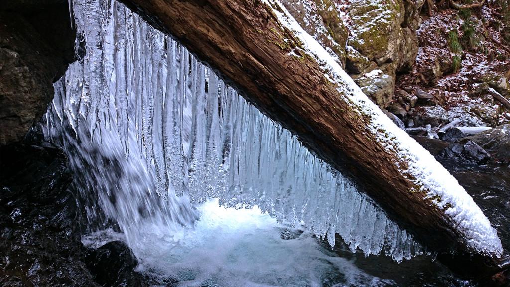 黒沢川上流の氷柱