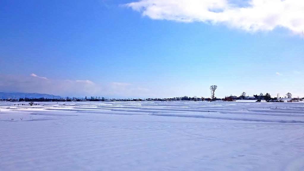 穂高伊夜比古神社付近の雪原