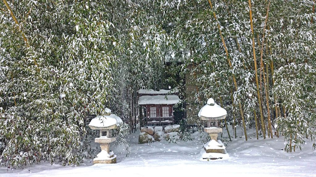 正真院横の小さな祠と雪を被った竹。