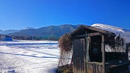 雪を被った無人販売所