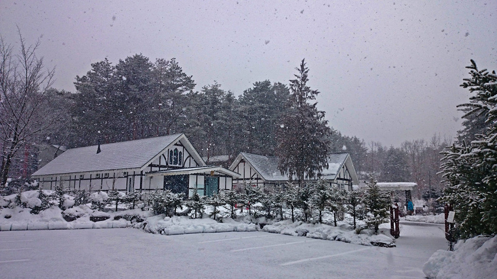 雪の大熊美術館