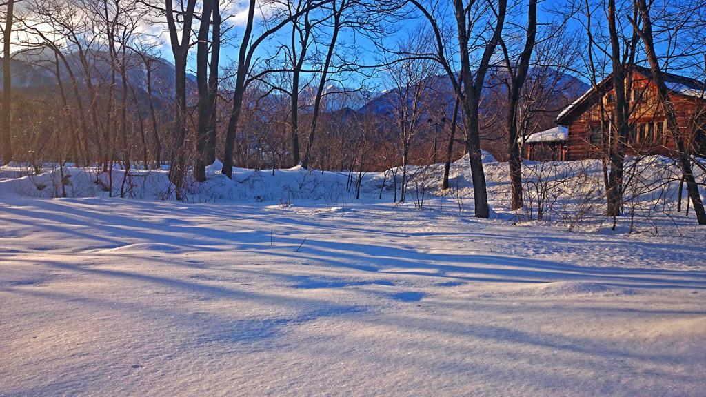 カナディアンハウスと雪の上の影