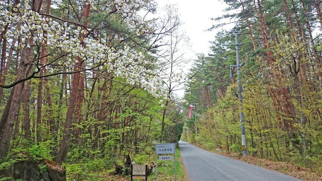 新緑と山桜咲く有明山通り