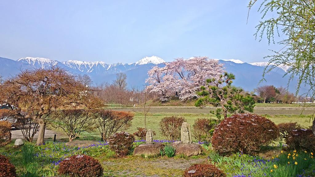 水色の時道祖神・桜・常念岳