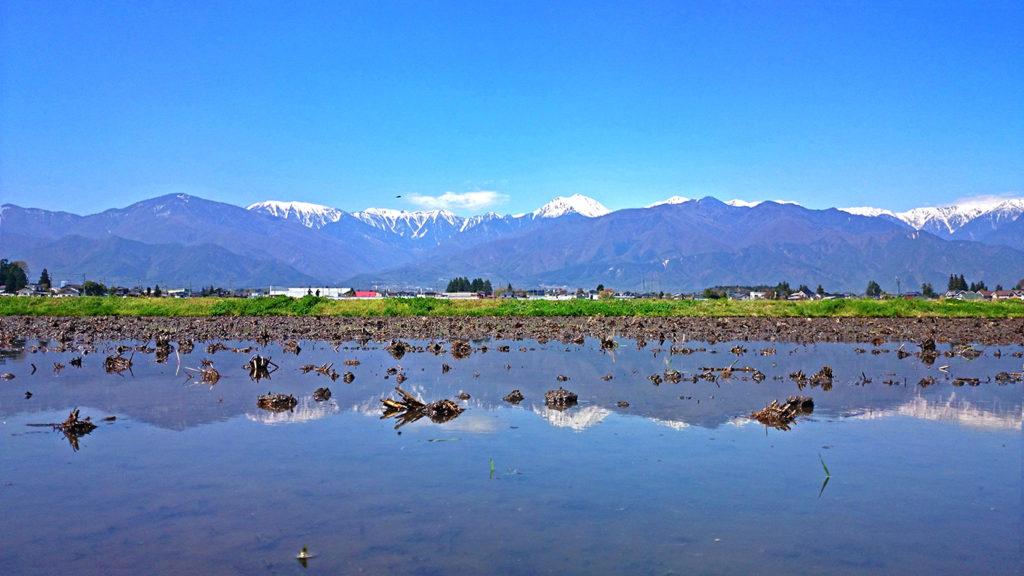 常念岳と田んぼの水鏡