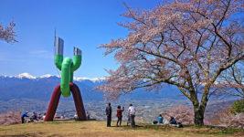 桜咲く長峰山