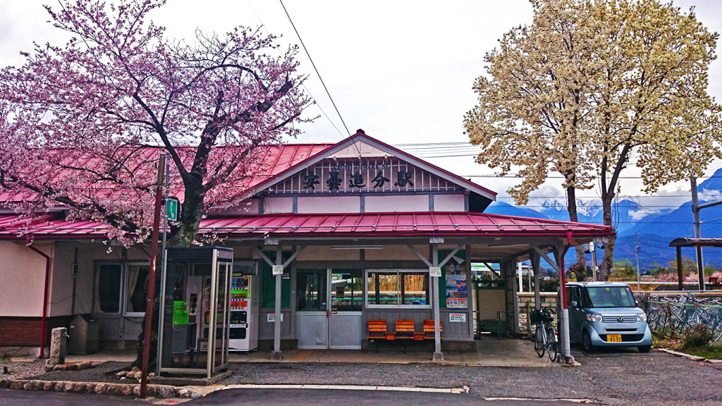 安曇追分駅前の桜とモクレン