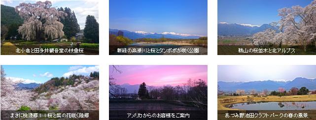rss6記事パターン