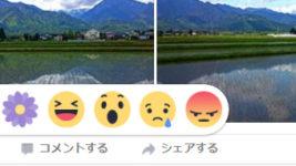 Facebook感謝ボタン