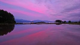 夕焼け空が映り込む水鏡