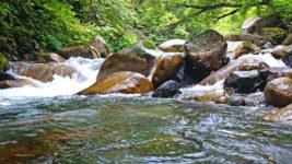 烏川上流の風景2