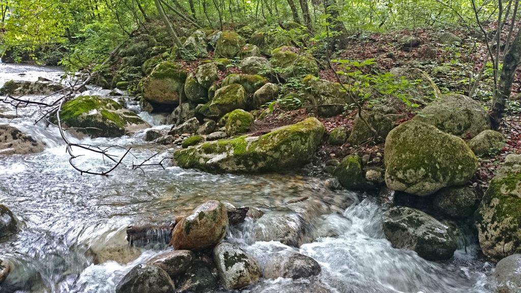 中房川横の水路
