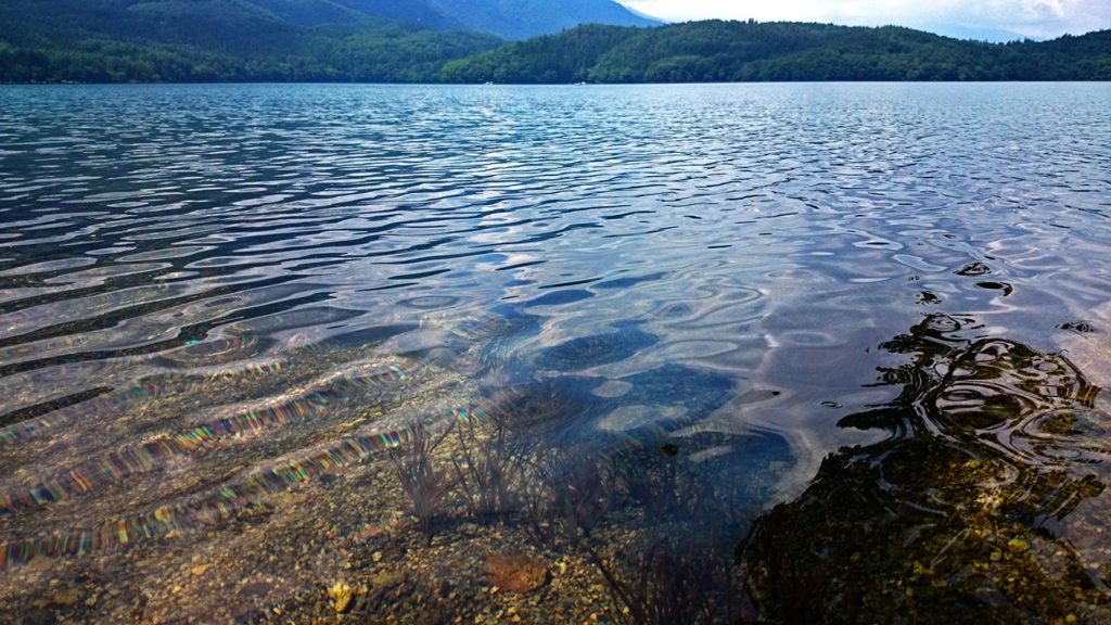 透明度の高い青木湖の水
