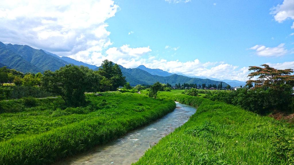 緑生い茂る夏の乳川の風景