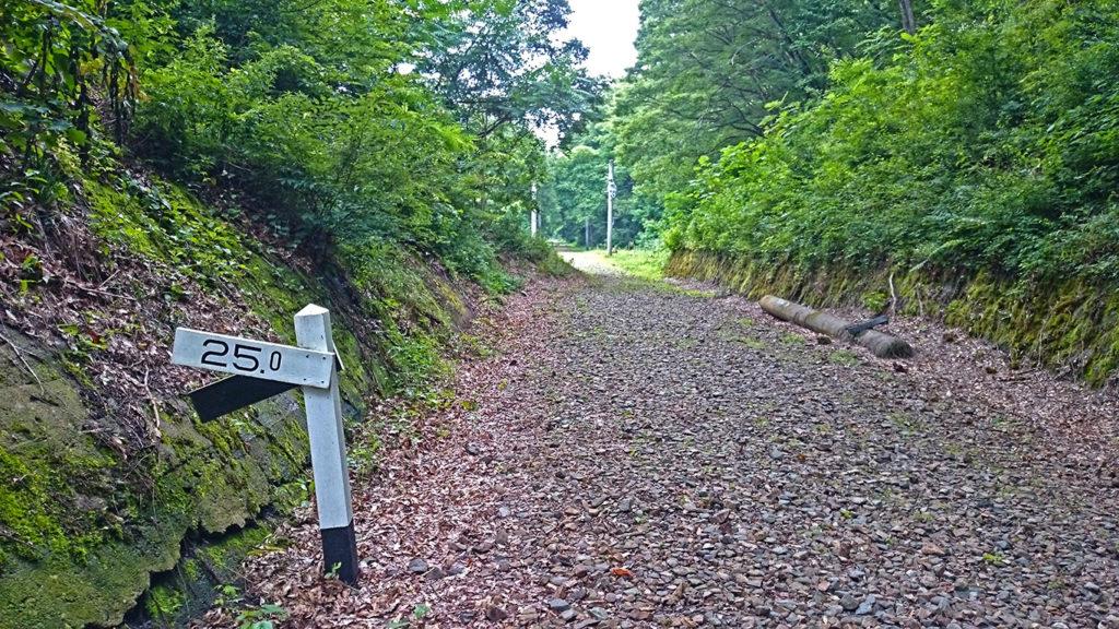 旧国鉄篠ノ井線廃線敷 遊歩道