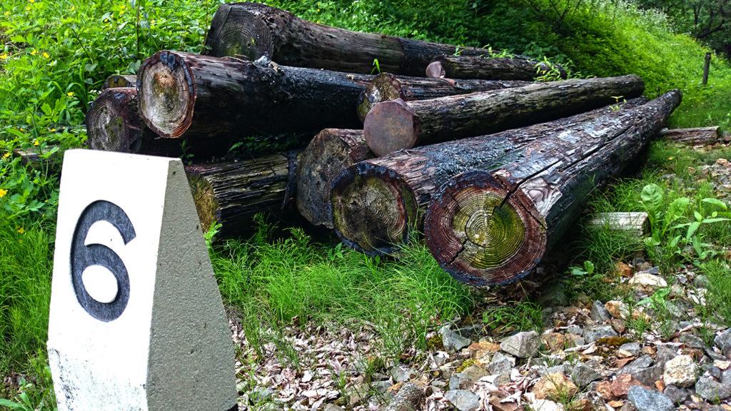 旧国鉄篠ノ井線廃線敷 タールが塗られた古い電信柱