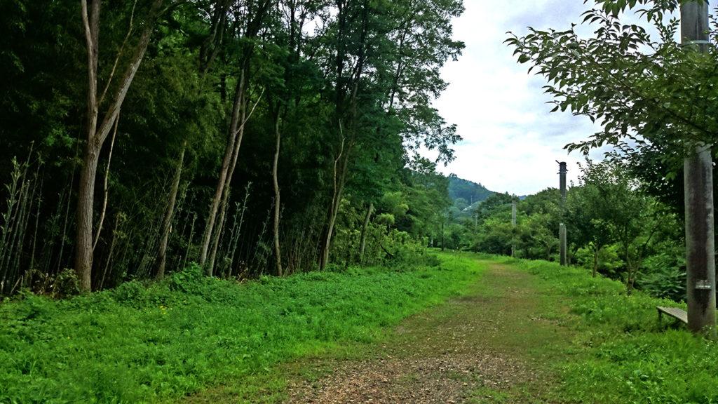 古い電信柱がそのまま残る旧国鉄篠ノ井線廃線敷