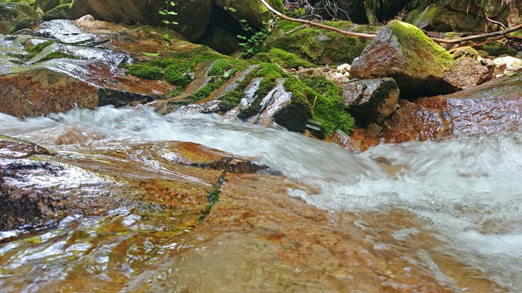 黒川沢の流れ