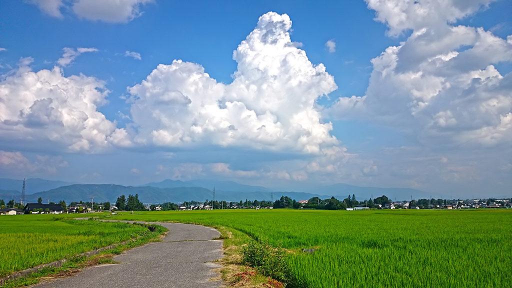 入道雲と田んぼの間を走る道
