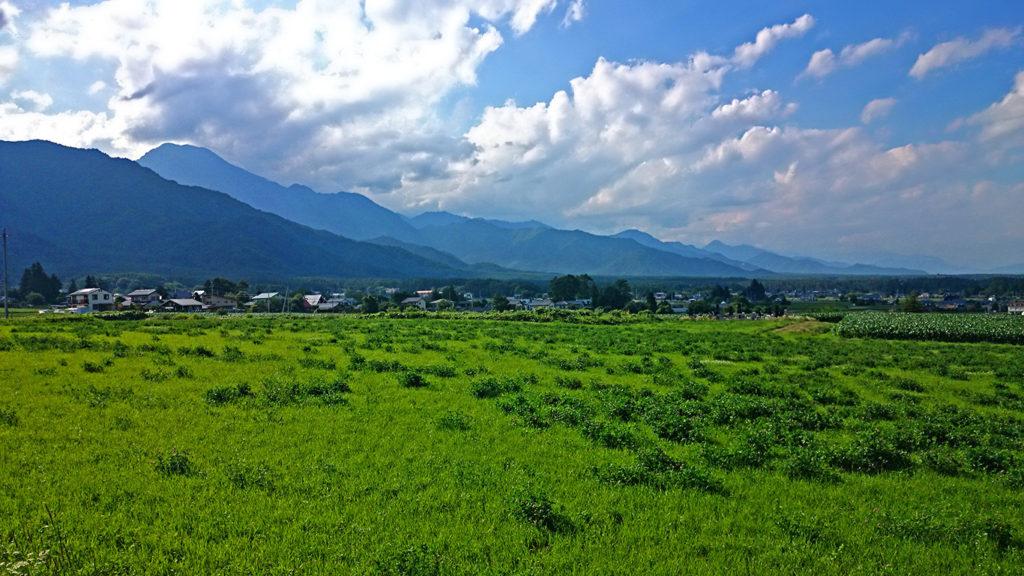草原と夏の空