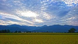 うろこ雲と常念岳と田んぼ