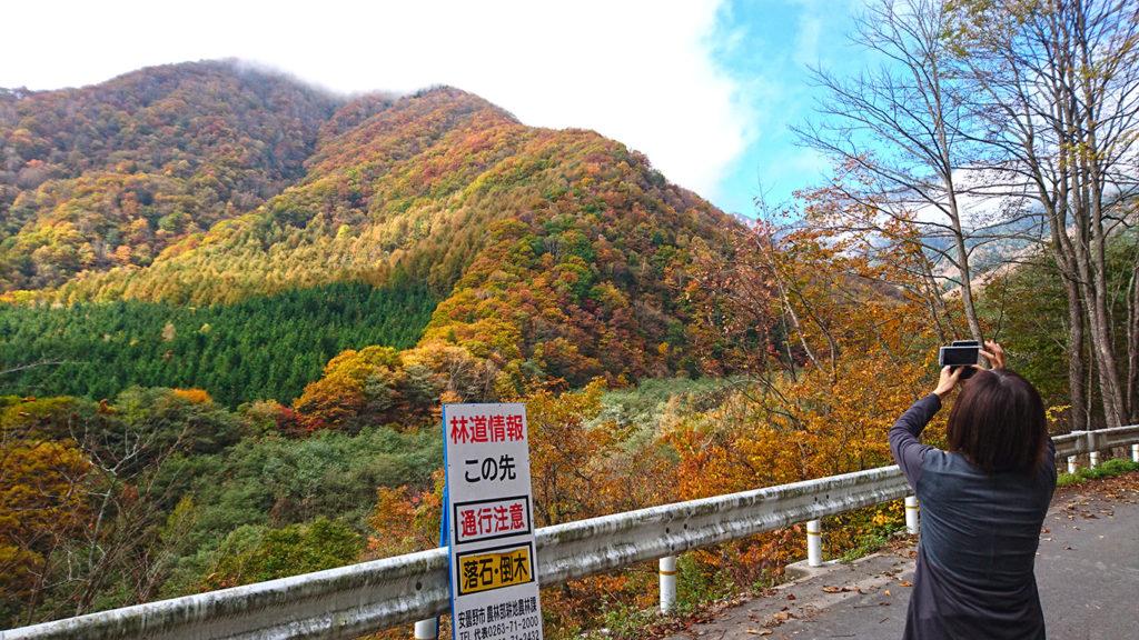 烏川渓谷2